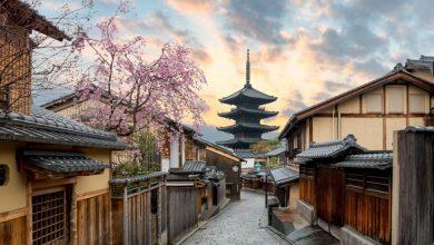 Peli o manta. Japón mainstream. Kyoto.