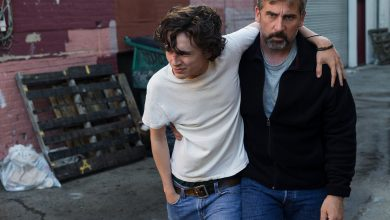 Peli o manta. Beautiful boy. Steve Carell Timothee Chalamet