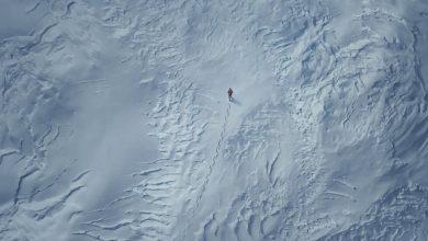 Arctic. Peli o Manta. Ártico Mads Mikkelsen