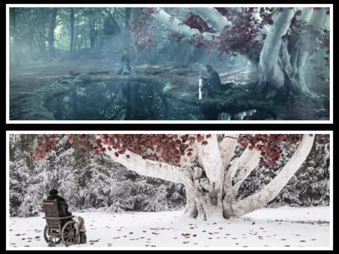 peli o manta. errores de juego de tronos. lago invernalia