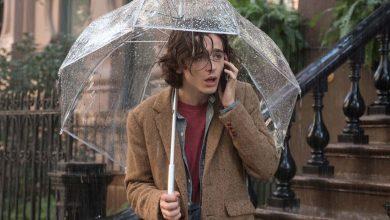 Peli o manta. Día de lluvia en Nueva York. Chalamet