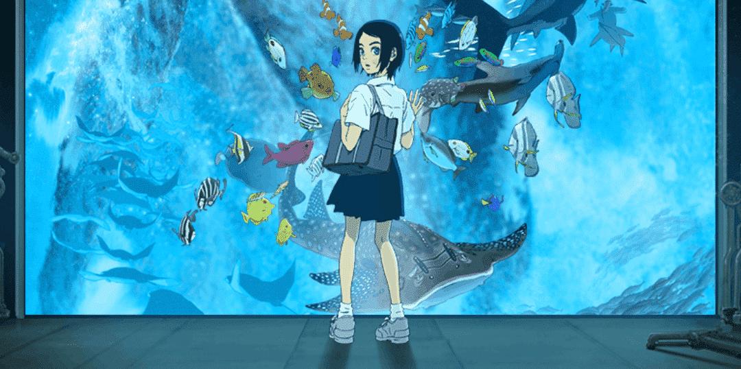 peli o manta. los niños del mar. acuario