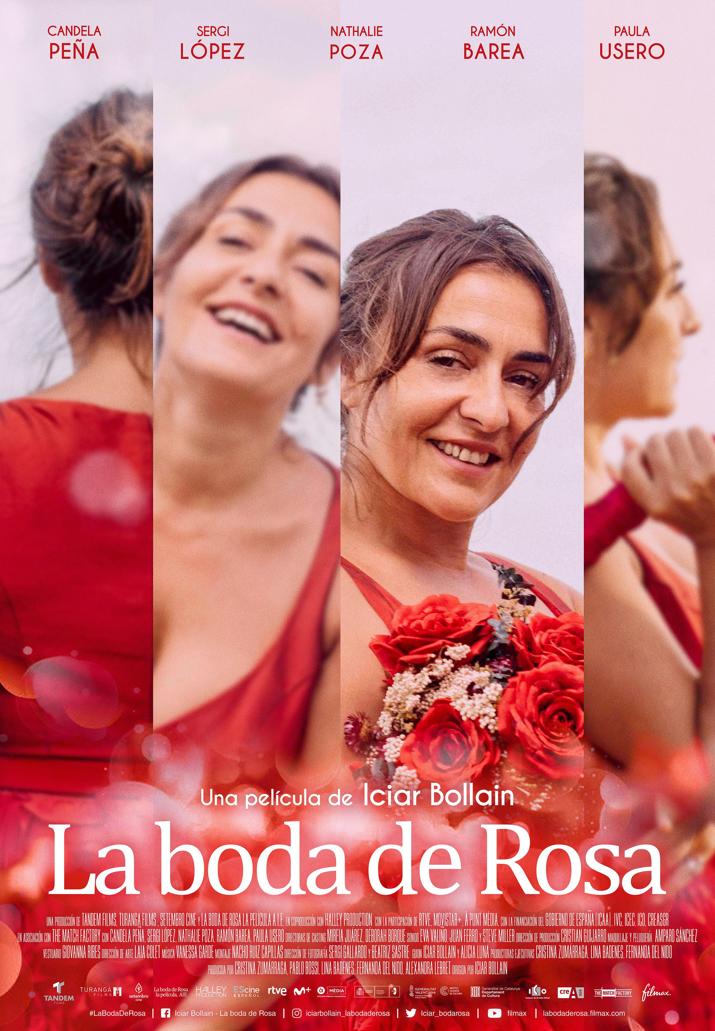 Peli o manta. La boda de Rosa. Poster